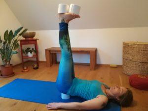 Yoga animals mit Shaktshiva jeden Mittwoch